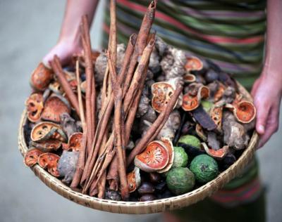 Ajurvéda - zdraví vycházející ze správného stravování
