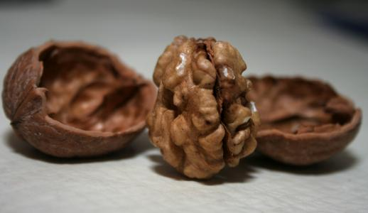 8 nejzdravějších druhů ořechů a semen
